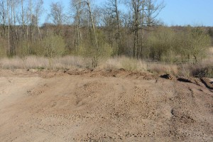 Ravinen vid skogskanten bakom reningsverket har fyllts ut med blandade massor. Foto: Berit Önell