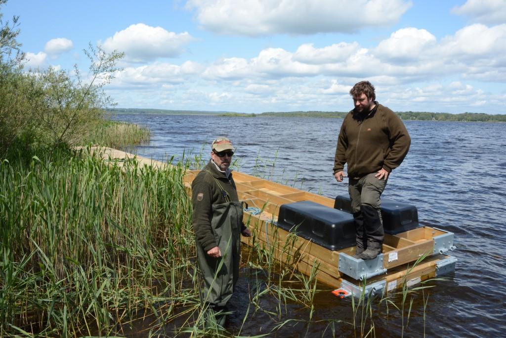 Fiskevårdsföreningens ordförande Mats Bengtsson och instruktören Mattias Lövqvist från Naturbruksgymnasiet i Osby arbetar med flytbryggan i Finjasjön. Foto: Berit Önell