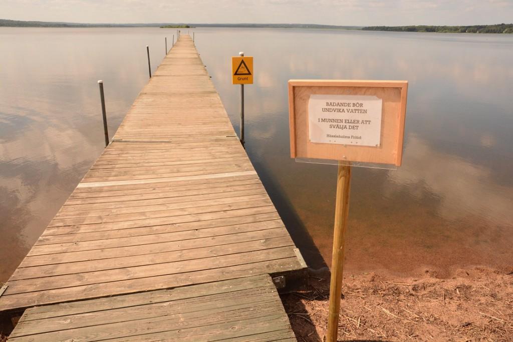 Kommunen varnar för vattnet vid Björkvikens brygga och det var också folktomt i vattnet på torsdagen den 6 augusti.