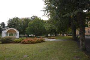 """Officersparken och musikpaviljongen skulle kunna användas vid Europaforum, tycker """"Paviljongens vänner"""" som redan fått många att skriva på för en folkomröstning. Foto: Berit Önell"""