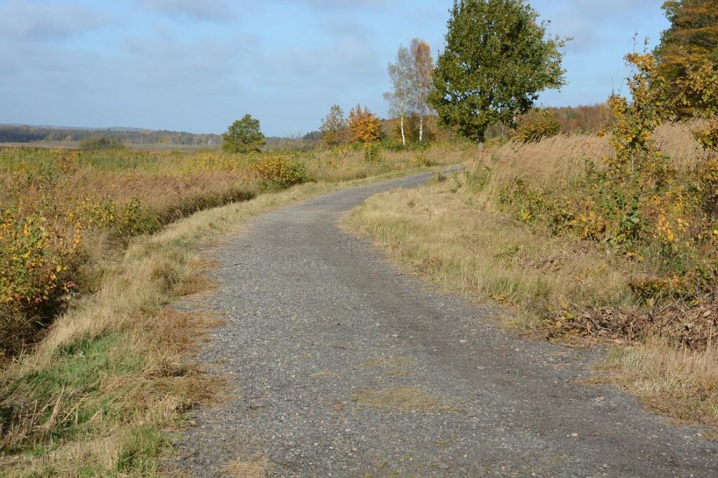 Kommunen har lagt miljöfarlig asfaltkross på fler sträckor av Skåneleden vid Finjasjön. Nu måste all asfalt bort. Foto: berit Önell