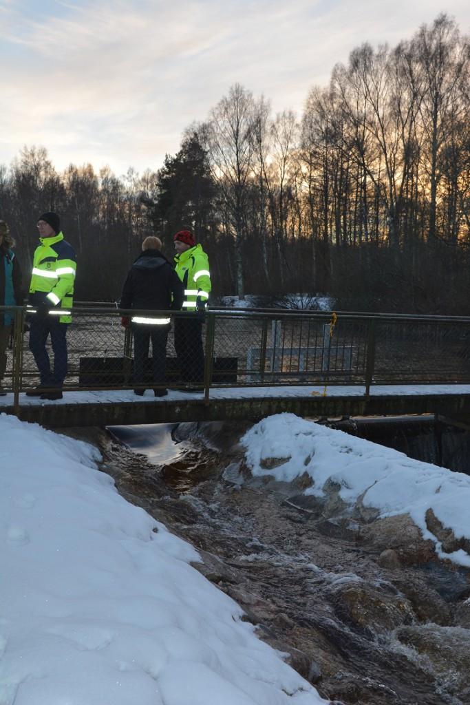 Vattnet släpptes på till den nya fiskvägen som är cirka 100 meter lång.