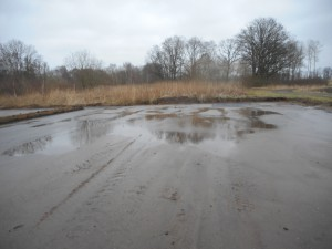 Regnvattnet har samlats i bakre delen av bäddarna.