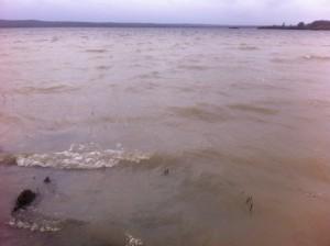 Finjassjön missfärgades flera gånger i november över ett stort område som utgick från Maglekärrsbäckens utlopp. Observera avgränsningen i vattnet i bortre delen av bilden.