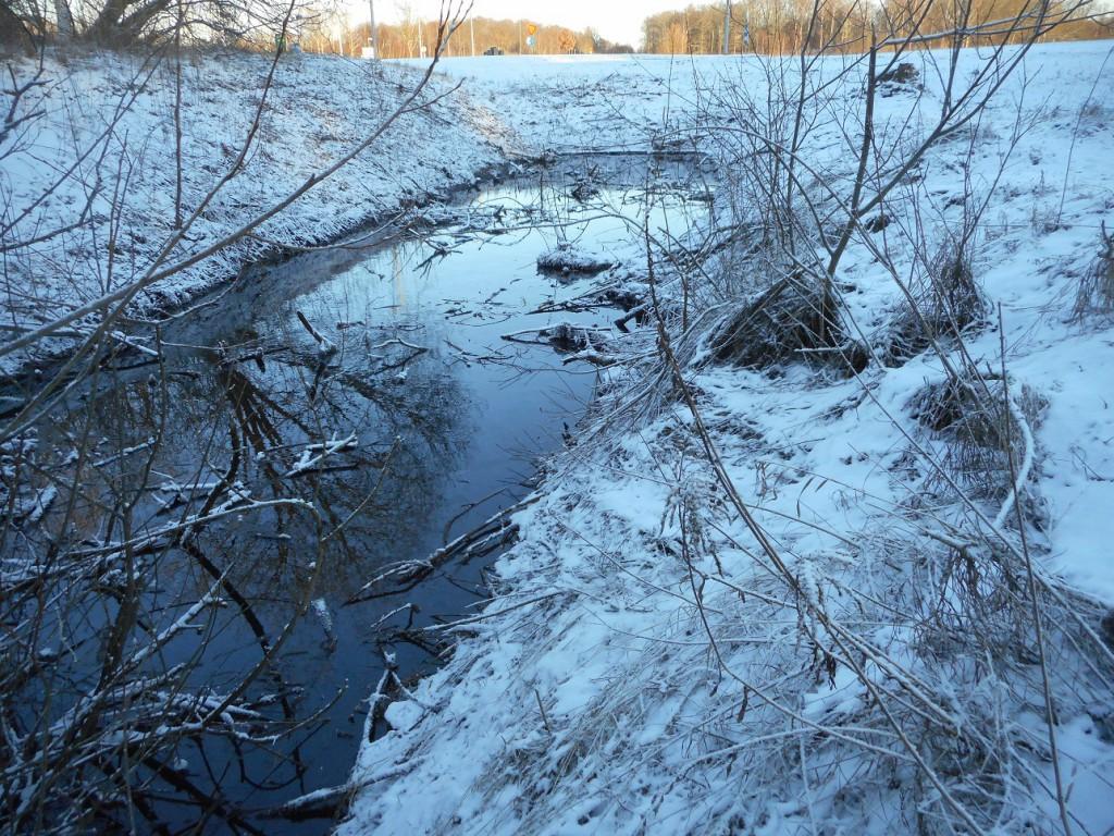 Miljökontoret har nu varit på plats, men har inga svar på varför Sötekärrsbäcken värms upp, trots vinterkylan. Vattentemperaturen har nu ökat, från sju till nio grader.
