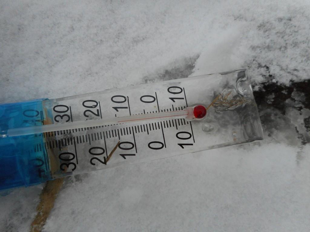 14 plusgrader var det häromdagen i våtmarksfiltret, dammen som bara skiljs från den uppvärmda Sötekärrsbäcken av Hovdalavägen.