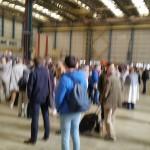 Passagerarna fördes till en stor hangar på flygplatsen efter terrordådet. Foto: Hasse Bengtsson
