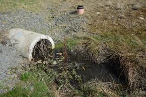 Dagvattnet från den förorenade fastigheten rinner sannolikt ut i dagvattensystemet och diket bredvid konstgräsplanerna på Österås.