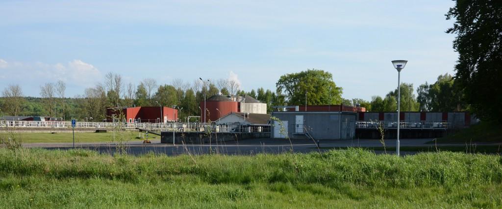 Bakterien, även kallad smutsvattensvamp, som finns i Sötekärrsbäcken kan ha kommit från reningsverket. Foto: Berit Önell