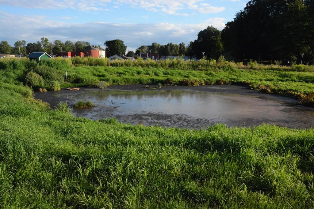 Kan fiskdöden ha samband med något problem i reningsverket? Den frågan är ännu obesvarad, men på onsdagseftermiddagen fanns vatten i bräddmagasinet vid reningsverket, vilket kan tyda på driftsstörning.