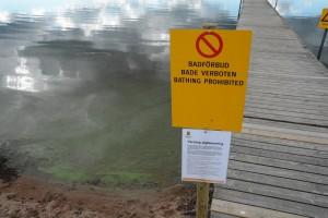 Det är badförbud vid Björkviken på grund av algblomning. Det gäller sedan den 28 juni, men kommunen har fortfarande inte informerat på sin hemsida. Foto: Berit Önell