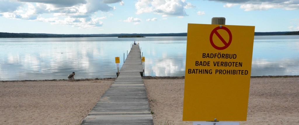 Nu är badvattnet i Björkviken otjänligt på grund av höga halter av misstänkta avloppsbakterier, enterokocker. Skylten kom upp i förra veckan på grund av algblomningen. Foto: Berit Önell