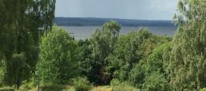 Den 9 augusti var vattnet i Finjasjön delvis gulfärgat igen.