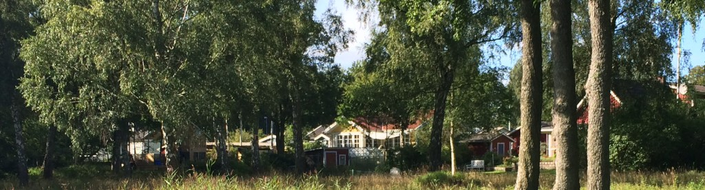 Grundvattnet i villaområdet i Sjörröd kan vara förorenat av avloppsvatten.