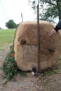 Den stora asken vägde över fyra ton.
