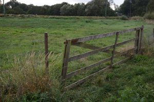 Grinden står på glänt och det ser ut att vara en fårhage innanför. Men här ligger Attarps reningsverk, dolt av högt gräs.