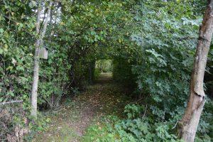 Enligt kommunens översiktsplan har området kring fastigheten unika natur- och kulturvården och bör bevaras. Foto: Berit Önell