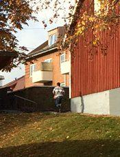 På en av vittnets bilder syns den misstänkte gärningsmannen som flydde ensam.