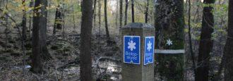 Länsstyrelsen tillåter kommunens köp av skog på Göingeåsen Betyder inte ja till exploatering