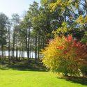 En hälsning från Lillasjön i höstskrud