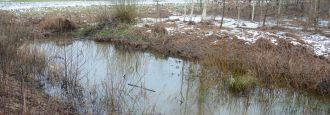 Mycket höga halter uran i brunnsvatten Dioxin i bäckens sediment