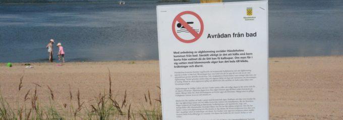 Finjasjöns negativa utveckling fortsätter