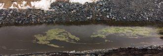 Frilagts vattenprover visar: Förorenat grundvatten vid reningsverket