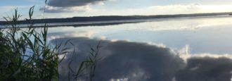 Mystisk hinna på sjön igen – ska nu undersökas